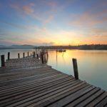 New Safe Harbour for Directors