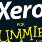 writing xero for dummies
